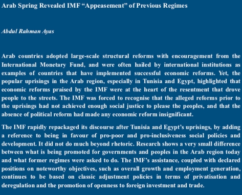 """Arab Spring Revealed IMF """"Appeasement"""" of Previous Regimes"""